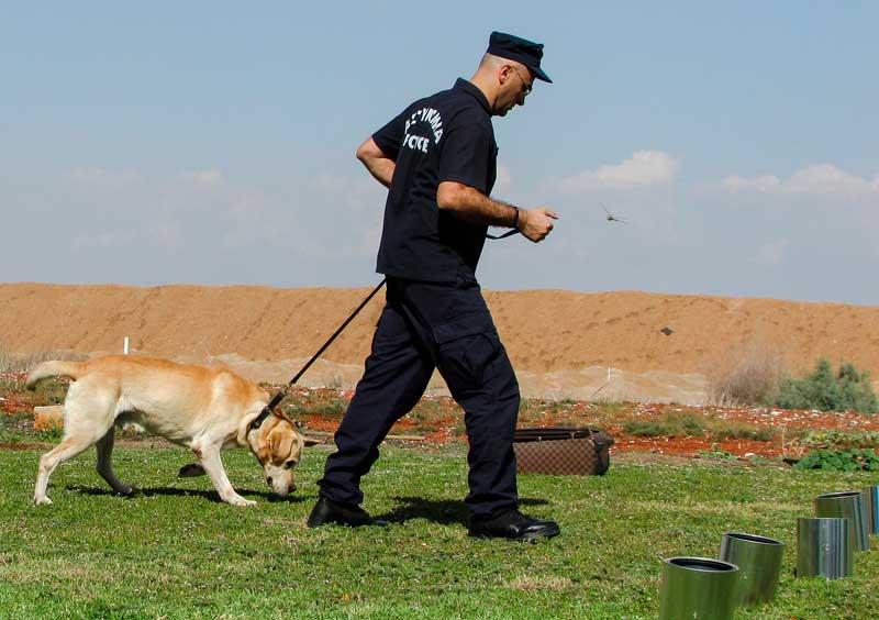 Entrenamiento y servicio de un perro policía