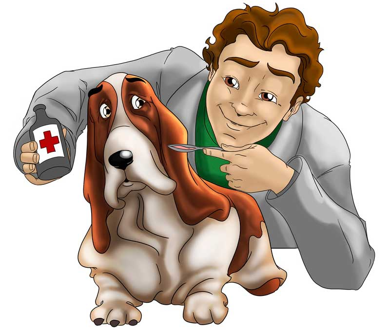 blogs veterinarios mascotas