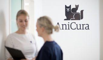 AniCura: Atención veterinaria especializada